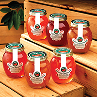 Marmalade Lovers Collection